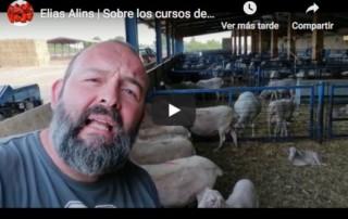 Elias Alins, cocinero-campesino-gastronómico recomienda los cursos de clown